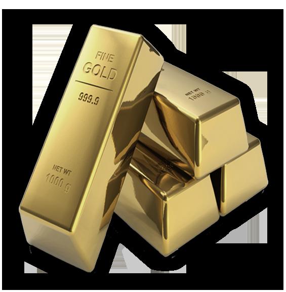 Protege Gold Membership